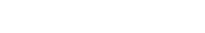 wpzoom logo png